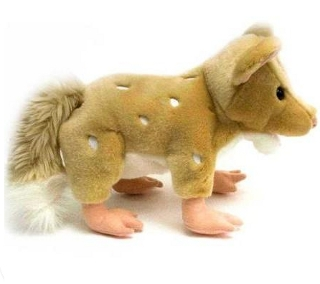 eastern quoll doll